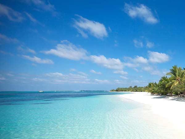 Mơ thấy biển có ý nghĩa gì?